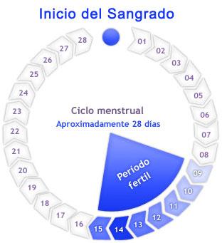 Calendario de fertilidad para quedar embarazada de una nina